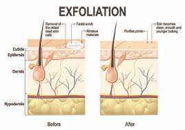 The Nitty Gritty of Exfoliation for Skin Care - Ida's Soap Box